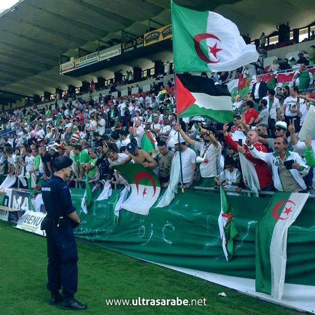 Algerier